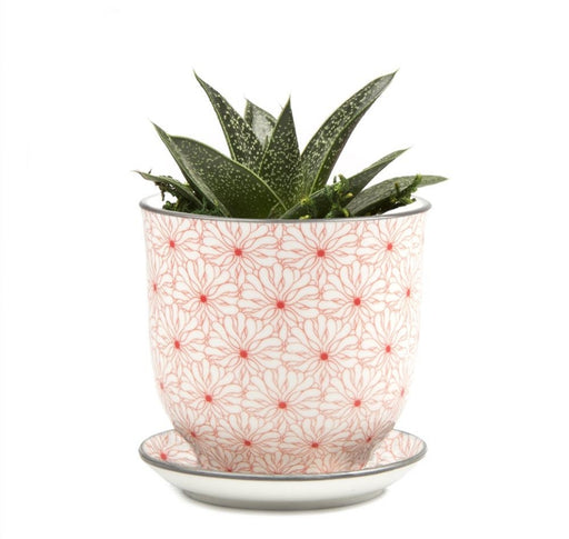 Pot & Saucer - Liberte 3 Red Flowers