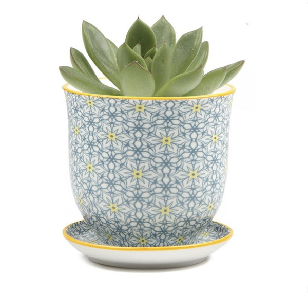 Pot & Saucer - Liberte 3 Yellow Stars