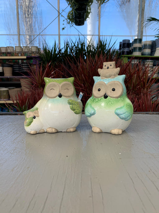 Two Toned Owls
