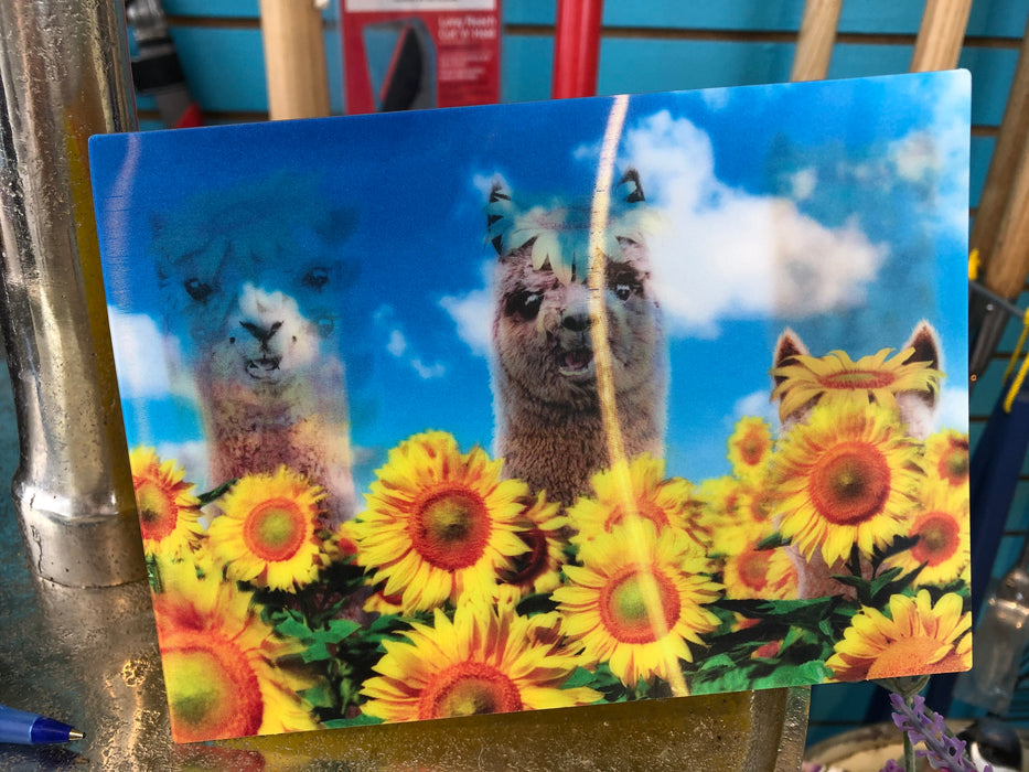 Greeting Cards-4.99