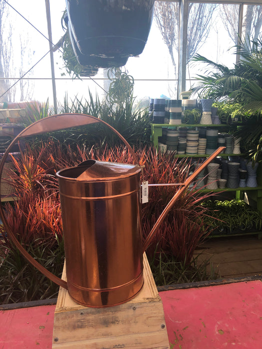 Watering Can Bronze