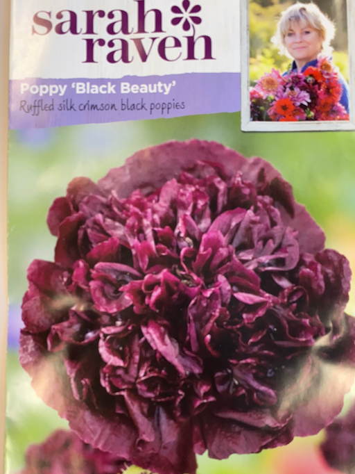 Poppy 'Black Beauty' -Seed Packet- Sarah Raven