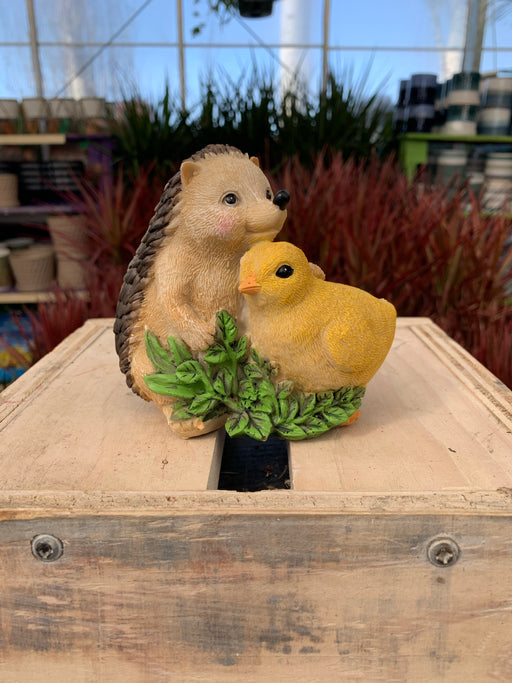 Hedgehog and Chick