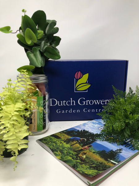 A Touch of Dutch Subscription Box