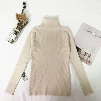 Thin Knitted Turtleneck Sweater