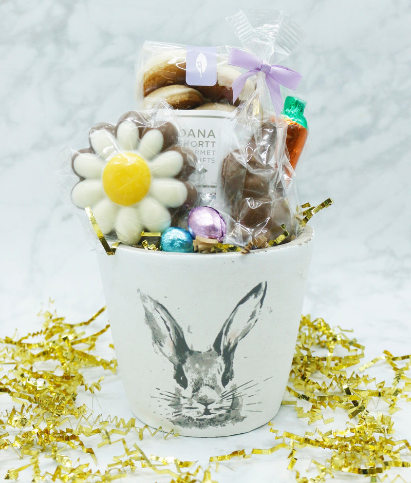 Henrietta Hare Chocolate Planter - Medium