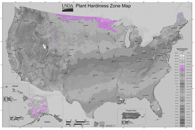 In the United States, large parts of Alaska, Idaho, Montana, North Dakota, Minnesota and Wisconsin are in zone 3. The zone stretches down into Wyoming and even parts of Colorado. On the east coast, some folks living in the northern parts of New York, Vermont and Maine may find themselves in zone 3.  This zone has a limited growing season. Last frost is typically mid May and and by mid September you can expect first frost.