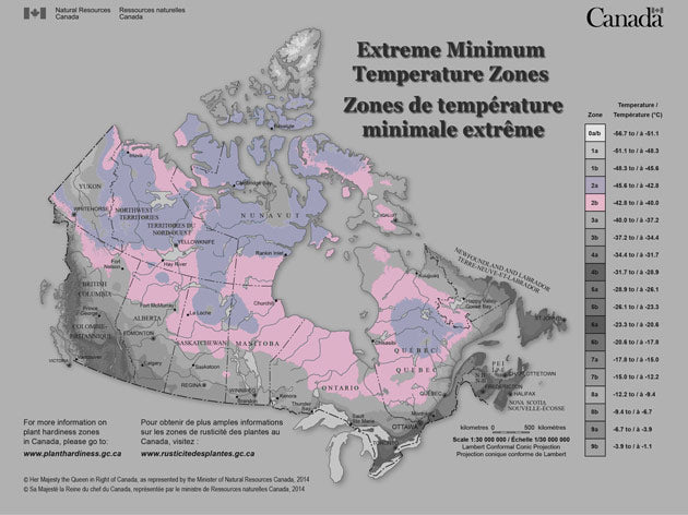 Hardiness zone 2 covers most Provinces and Territories across the northern parts of Canada. Temperatures in this zone can hit a chilly -45.6°C (-50°F).  Last frost is mid May and first frost comes the first week of September.