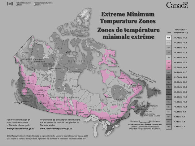Average extreme low temperatures in this zone can get as low -40°C (-40°F) in the winter. In Canada, the border provinces all have a band sitting in this zone.