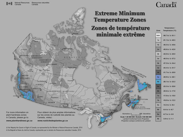 It usually doesn't drop below -28.9°C (-20°F) in zone 5. Large parts of Ontario are in this zone from Sudbury to the GTA and east along the north shore of Lake Ontario. The zone covers the southern part of Quebec along the US border and into southern New Brunswick.