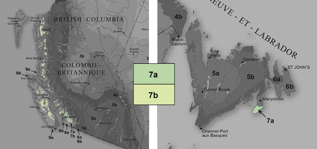 People living in this zone rarely see temperatures dip below -17.8°C (0°F). If you're a Canadian, head west right to the coast of Victoria Island, BC. On the east coast, folks living in New Jersey, Delaware, Virginia, North Carolina are in this zone. The zone also covers parts of Georgia, Alabama, Tennessee, Mississippi, Arkansas, Oklahoma and north Texas. At New Mexico, the zone starts to breakup into smaller pockets as it heads north into the Rocky Mountain States.  Last frost usually happens around the middle of April while first frost typically comes by the first week in November.