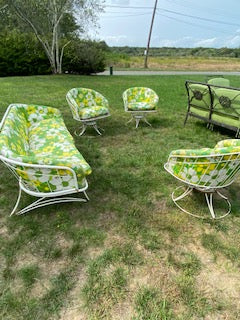 Mid Century 50's outdoor set