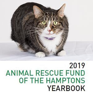 2019 ARF Yearbook
