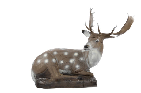60240 FB Lying Fallow deer