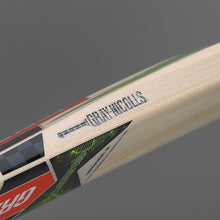 Gray Nicolls Velocity XP1 Warrior Kashmir Willow Bat