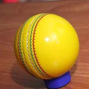 Graddige High Test Indoor Leather Cricket Ball