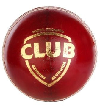 SG CLUB Cricket Leather Ball