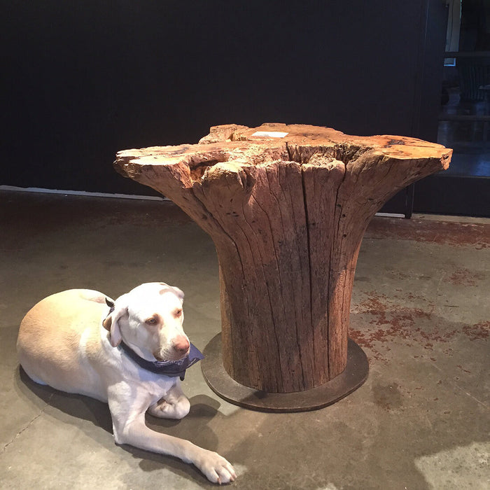 PLATEAU PL104 - WOODSWAN - Tree Stump Furniture & Coffee Tables