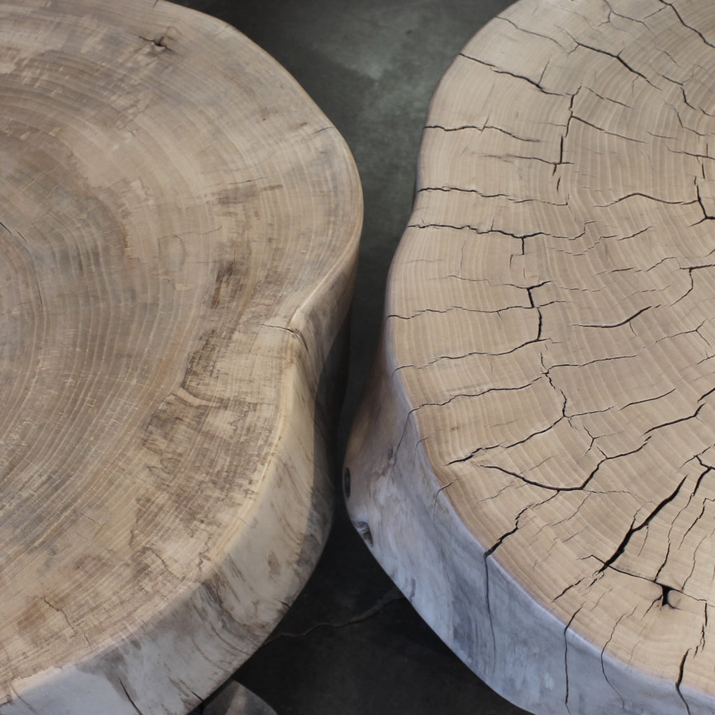 INDY NDY101 - WOODSWAN - Tree Stump Furniture & Coffee Tables