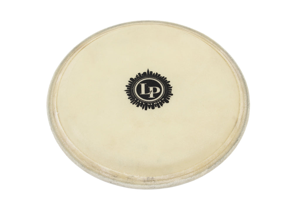 LP LP267A 10-Inch City Conga Head