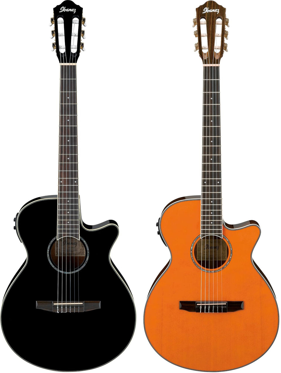 Ibanez AEG10NII Nylon String Cutaway Acoustic Electric Guitar