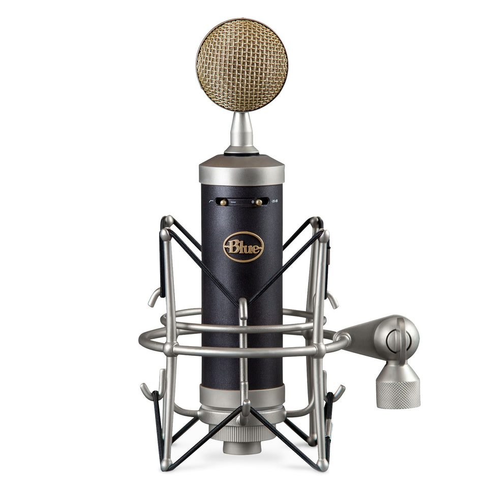 Blue Microphones Baby Bottle SL Large Diaphragm Condenser Microphone