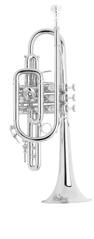 Bach 181SML Stradivarius B-Flat Cornet Outfit - Silver Plated
