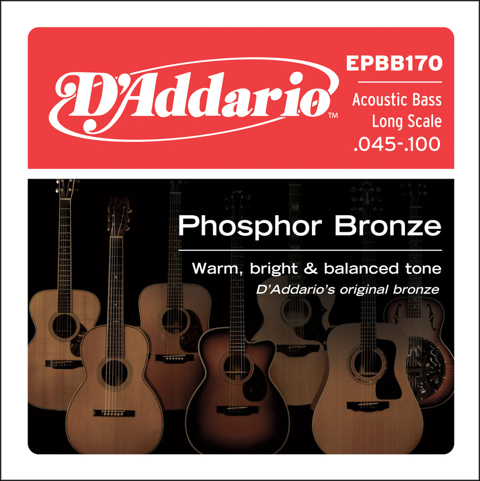 D'addario  EPBB170 Phosphor Bronze Acoustic Bass Strings, Long Scale, 45-100