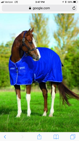 Amigo Hero  6 by Horseware- Lite sheet, turnout 600 denier in Atlantic blue