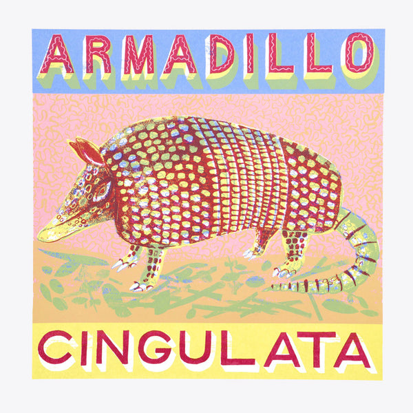 Armadillo print by Alice Pattullo