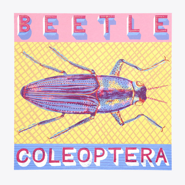 Beetle print by Alice Pattullo