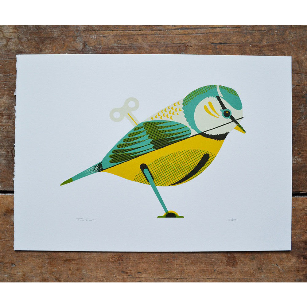Wind Up Bluetit Print by Tom Frost