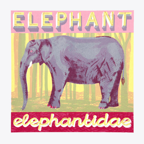 Elephant print by Alice Pattullo