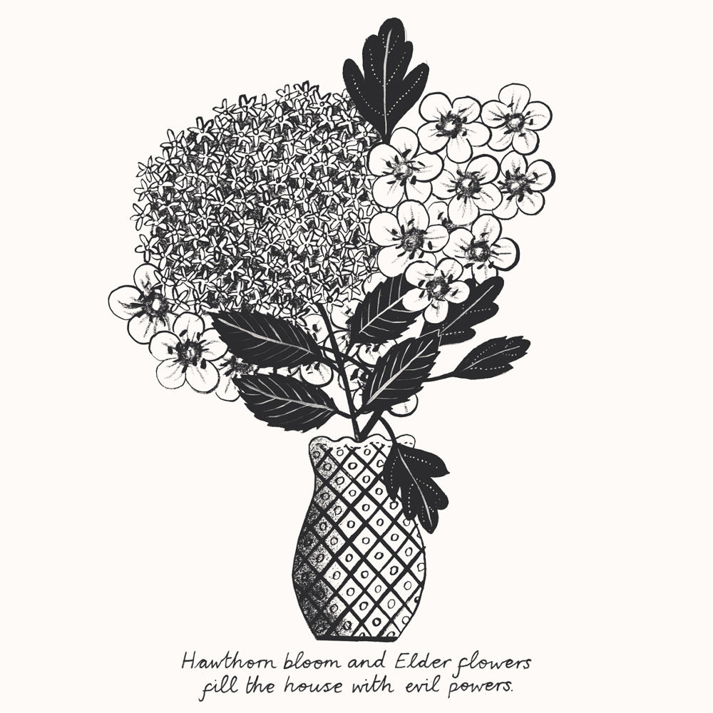 Hawthorn & Elderflower Print