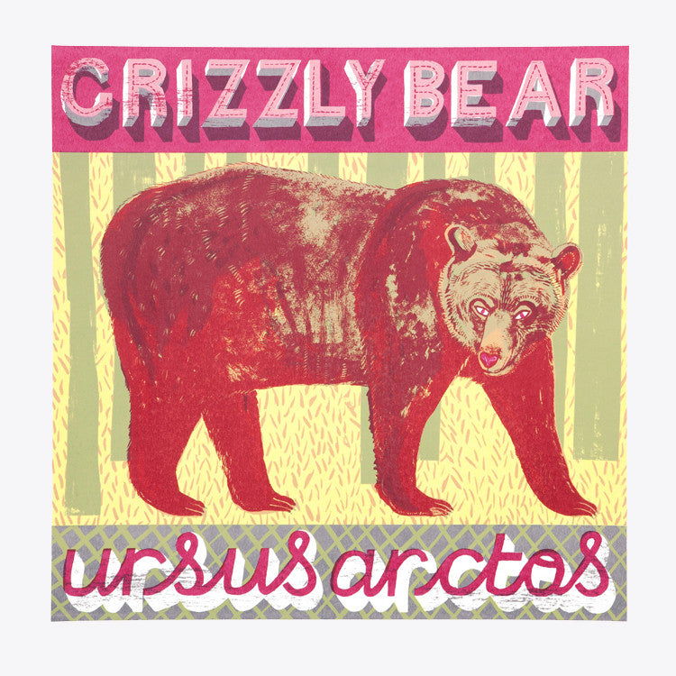 Grizzly Bear print by Alice Pattullo