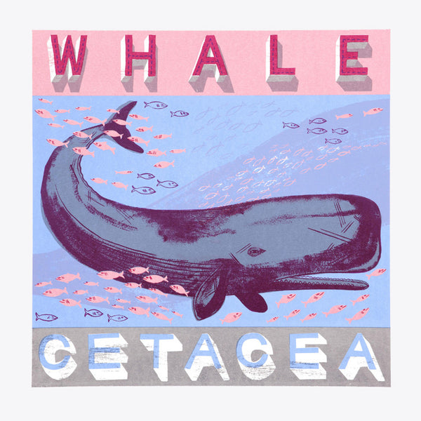 Whale print by Alice Pattullo