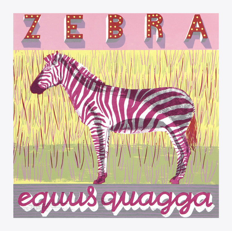Zebra print by Alice Pattullo