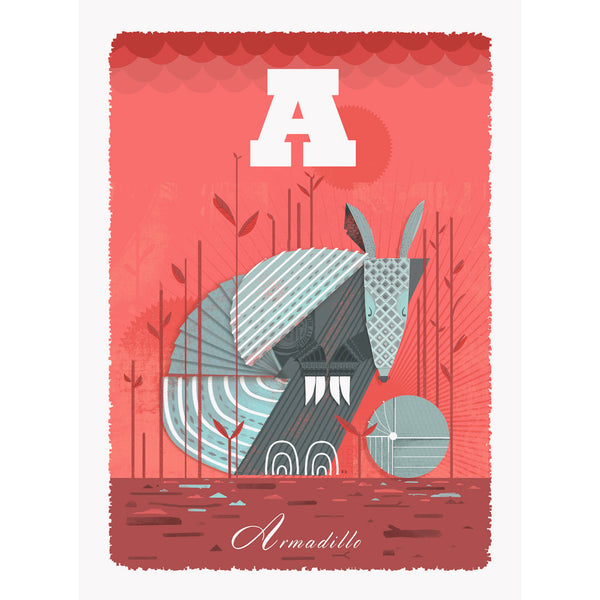 Armadillo print by Graham Carter