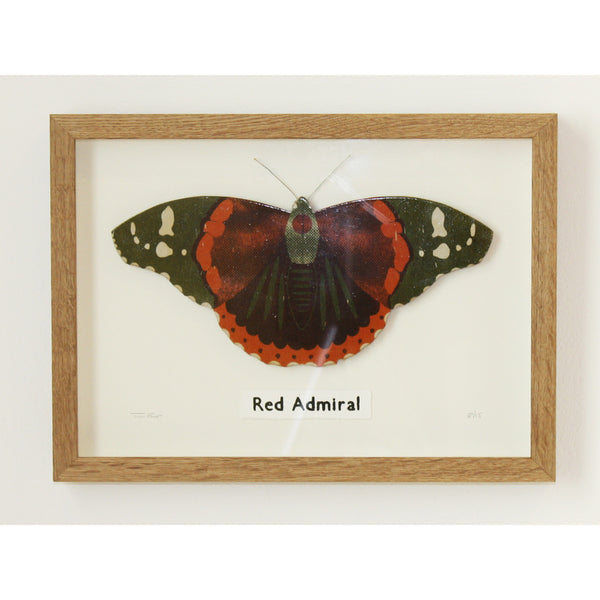 3D Red Admiral Butterfly