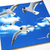 Colony of Black Headed Gulls Print