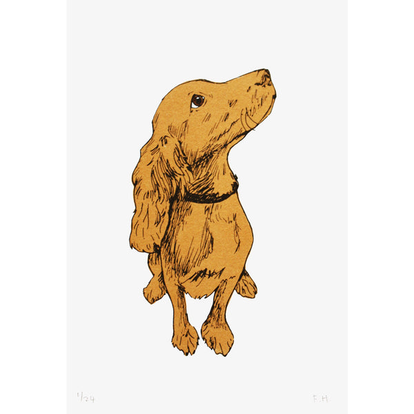 Golden Puppy print by Fiona Hamilton