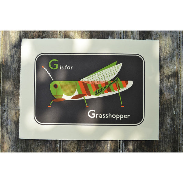 Grasshopper Print by Tom Frost