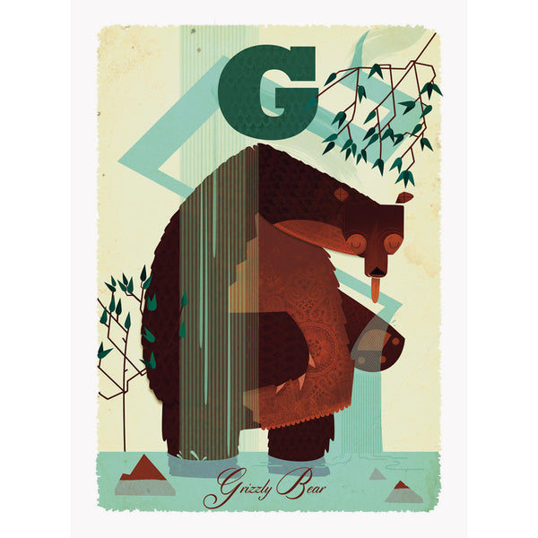 Grizzly bear print by Graham Carter