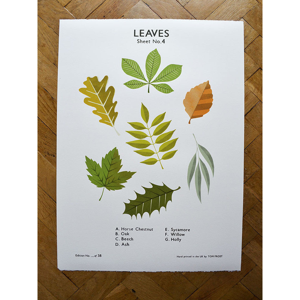 Leaves print by Tom Frost