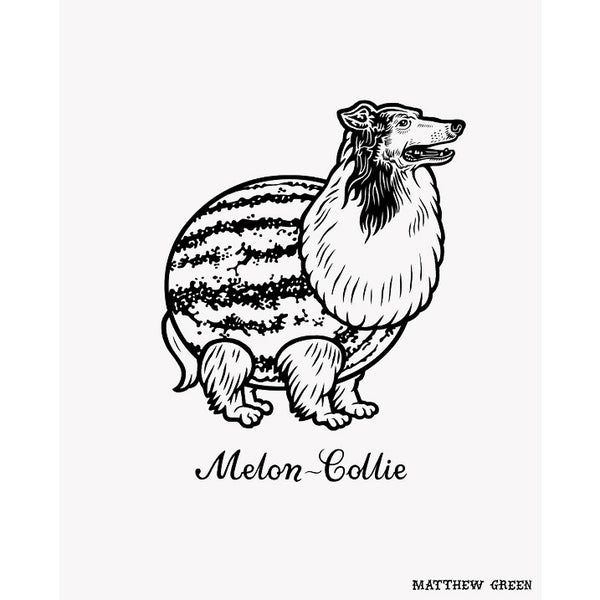 Melon-Collie Print