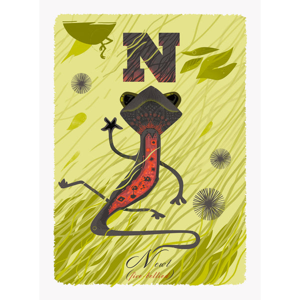 Newt print by Graham Carter