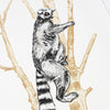 Ring Tailed Lemur Print