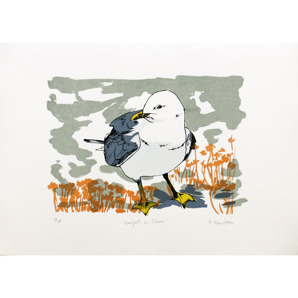 Seagull in Clover print by Fiona Hamilton