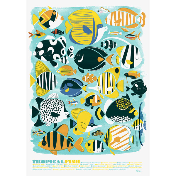 Tropical Fish A3 Print
