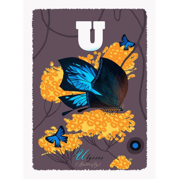 Ulysses Butterfly print by Graham Carter